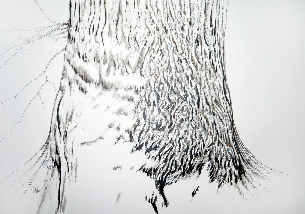 Winter Chestnut