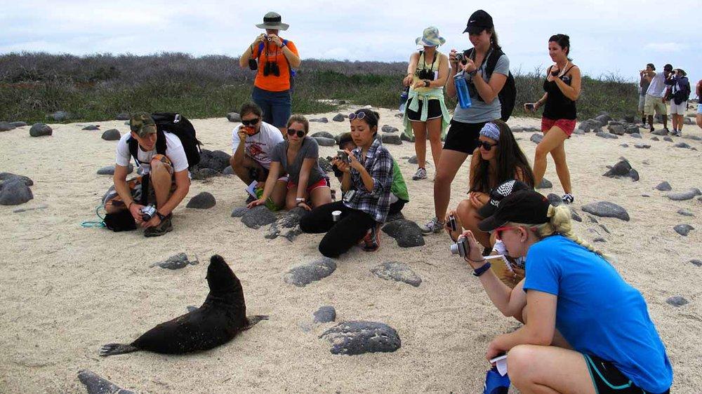 Volunteer Galapagos Ecotourism Internship