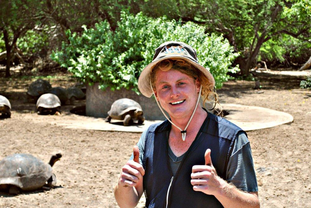 tortoise center 4.jpg