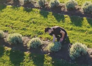 The Natural Vegan permaculture farm in the Okanogan Valley Photo Credit: Natural Vegan