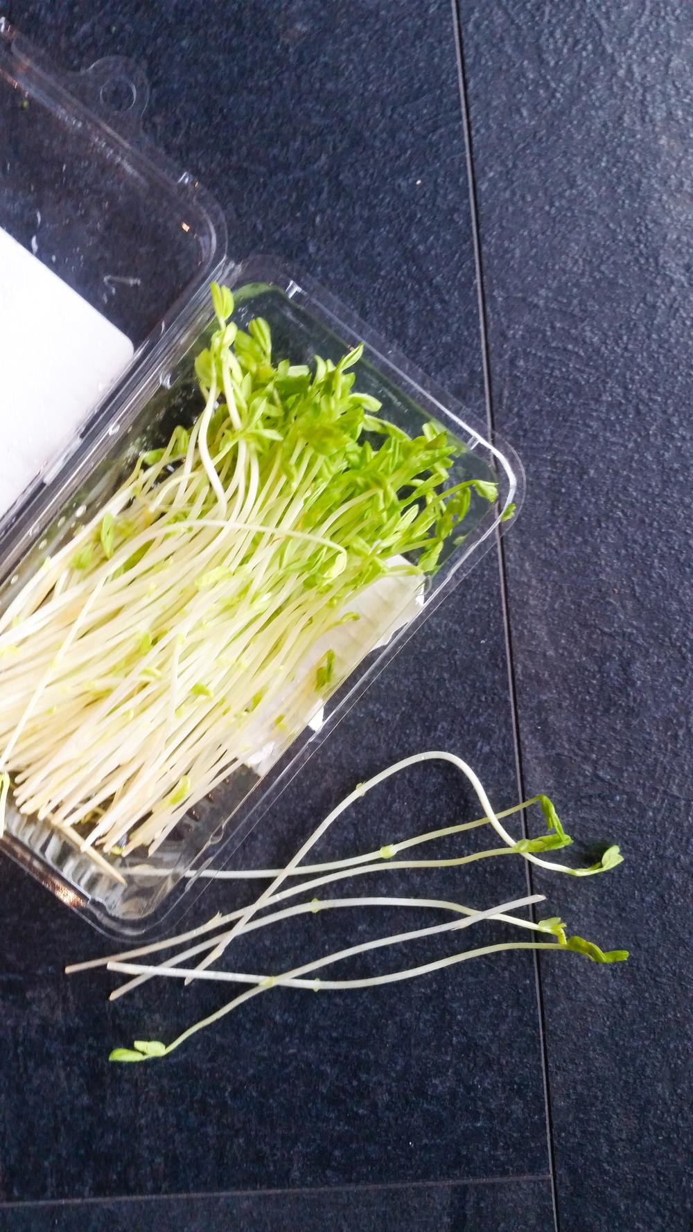 JW4 Radish Salad (10 of 14).jpg