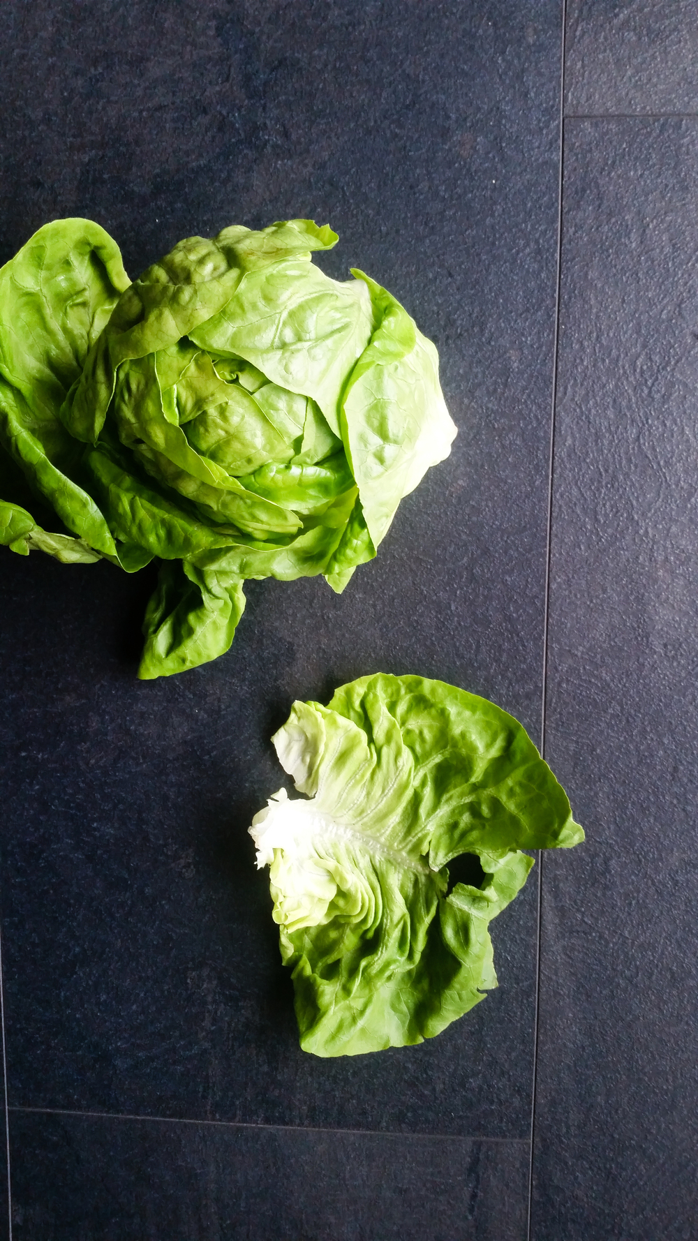 JW4 Radish Salad (12 of 14).jpg