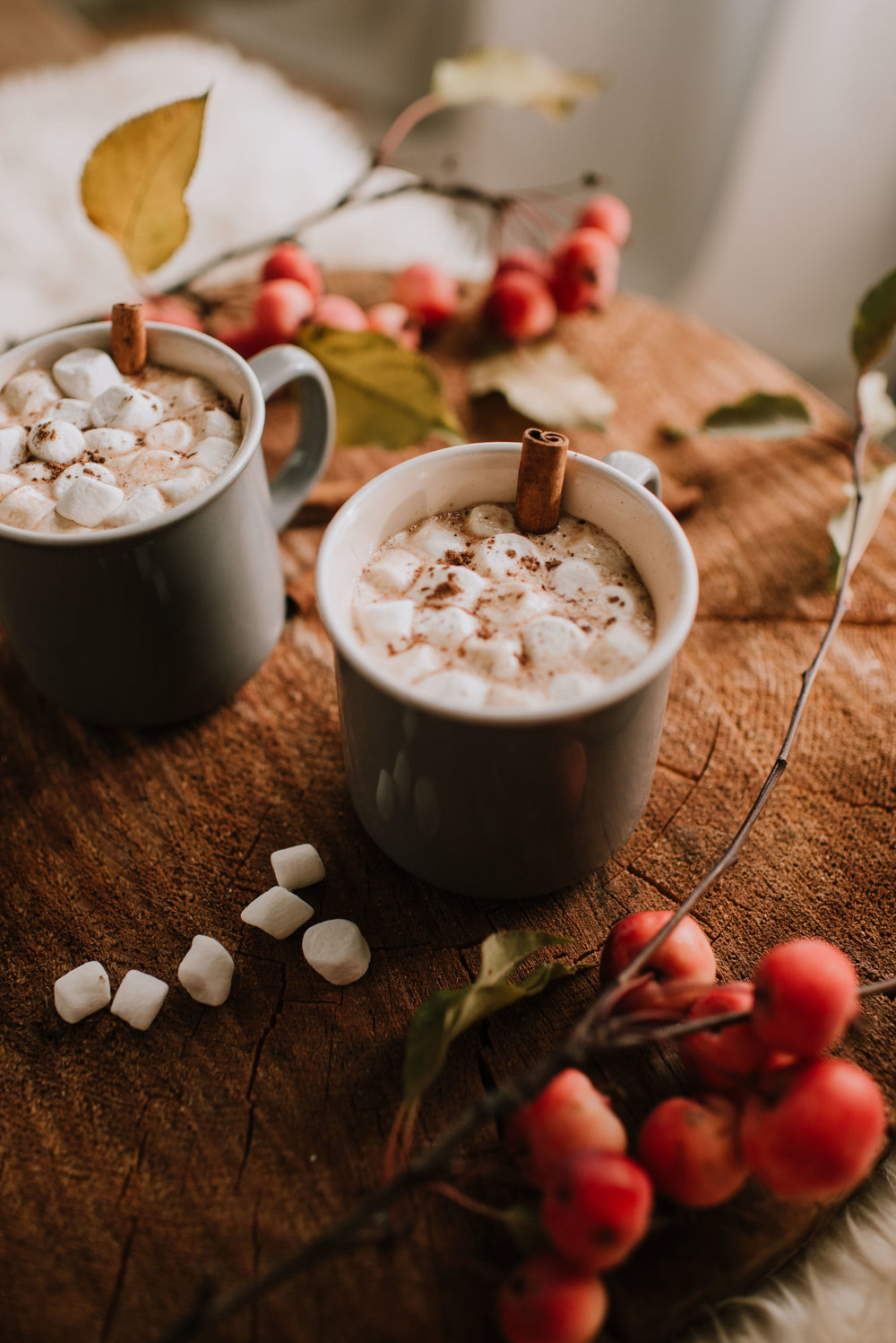 Mayan Hot Cocoa by The Nomadic Wife | Emilie Iggiotti Photography