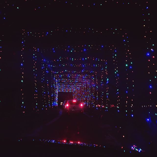 Second year in a row going to the @bingemans #giftoflights and it was so fun both times 💕 listening to cheesy Christmas music and driving through Christmas lights is a perfect holiday event in KW for all ages!! 🎄 . . . #kwawesome #kwigers #dtk #watreg #wrawesome #igerstoronto #lblogger #blogger #girlboss #goodvibesonly #vsco #vscocam #iphoneography #torontoblogger #lblogger #blog #girlboss #goodvibesonly #vsco #vscocam #iphoneography #torontoblogger