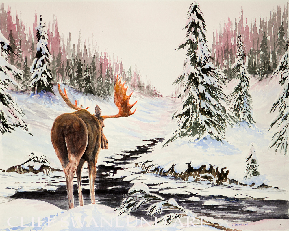 "Wandering Moose I 10"" X 14"" -  SOLD"