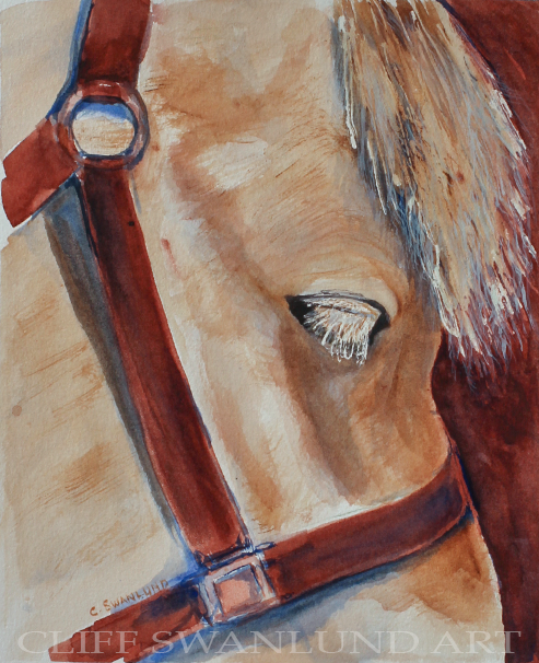 "Norwegian Fjord Horse I 8"" X 10"" - SOLD"