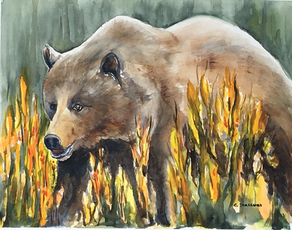 "Grizzly Life - 11"" x 14"" - available at Canmore Art Guild Art Show, Canmore, AB"