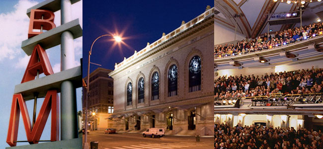 Image result for brooklyn academy of music