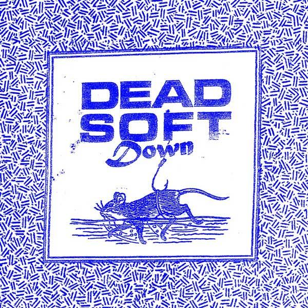 DS_S_cover_D.jpg