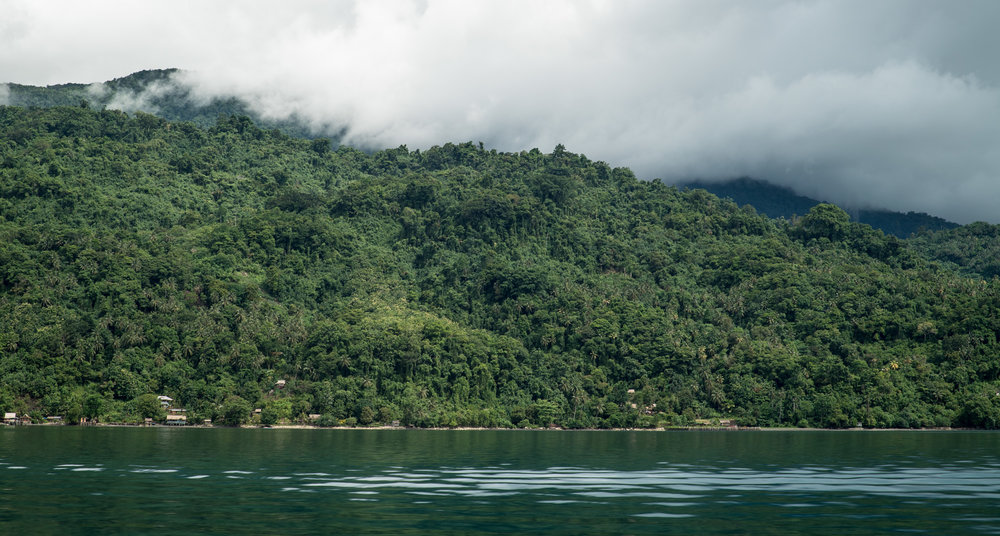 The lush green coast of Isabel Island.