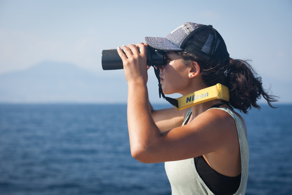 Co-Director, Danielle Ryan, on the look out for whales.