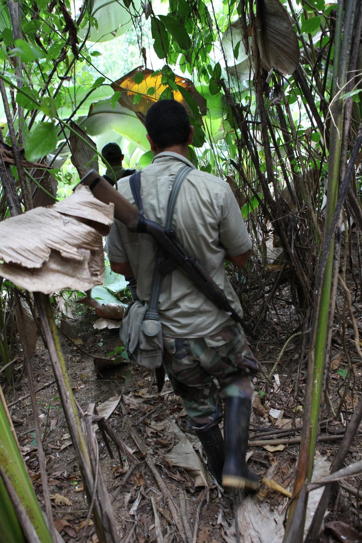 The Costa Rican park rangers slash through jungle, 2012.