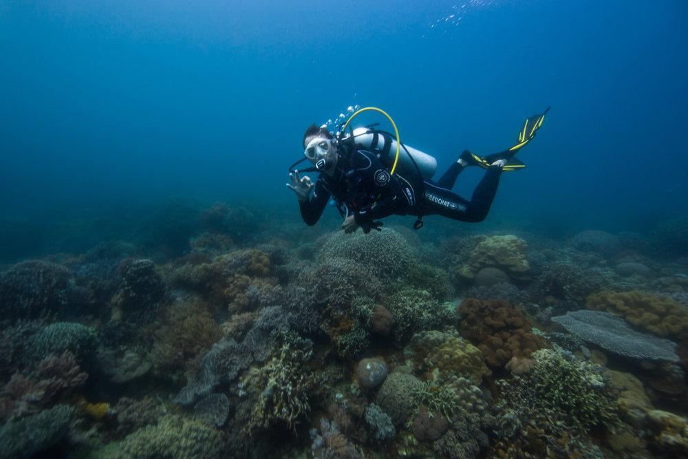 Plongeurs du Monde - Apo Island ©Danielle Ryan, Bluebottle Films.jpg