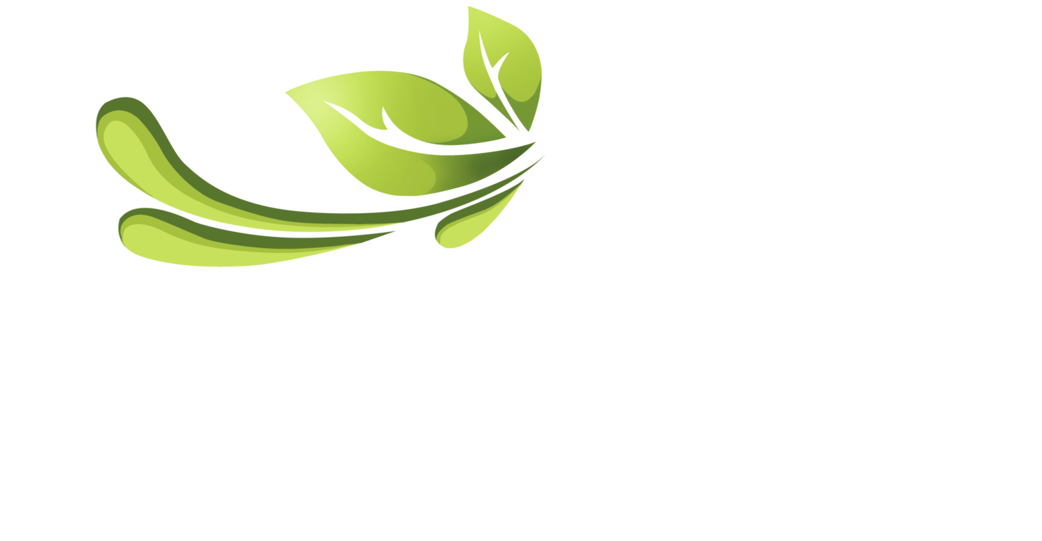 Spa 505 - Massage Massapequa & West Nyack (Palisades Mall)