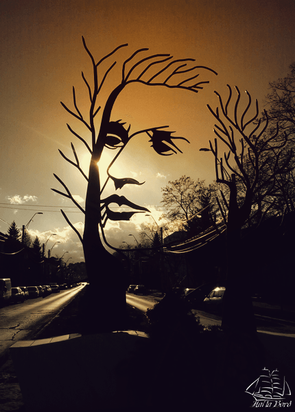 Image Source: hailabord.ro (Onesti, Romania)