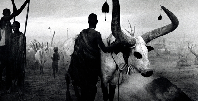 Tribesmen by Sebastiᾶo Salgado Description: The sense that these tribesmen, evoked by the foggy black and white appearance, are untouched by civilization—frozen in time.