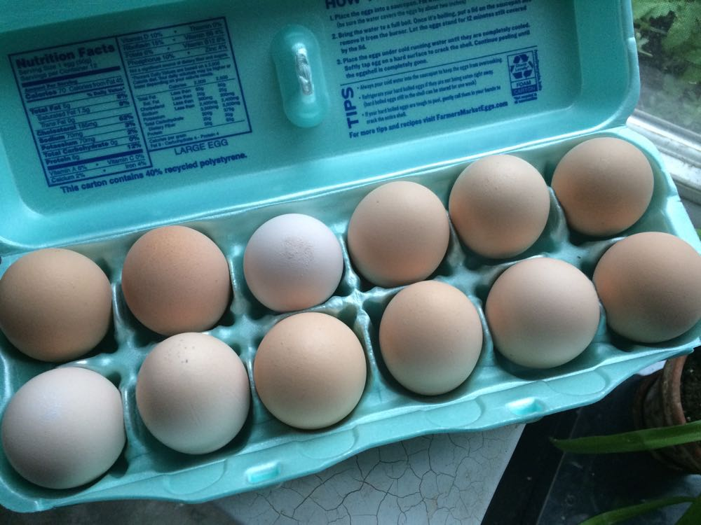 I found this carton of homegrown fresh eggs on my car seat earlier today. What a lovely gift!