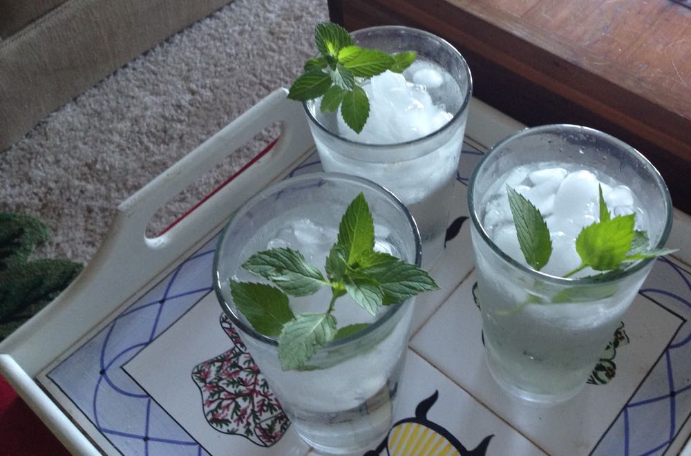 Spearmint garnish to make cold water even more refreshing at Bluebird Gardens.