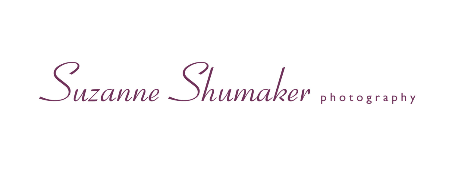 Suzanne Shumaker Photography