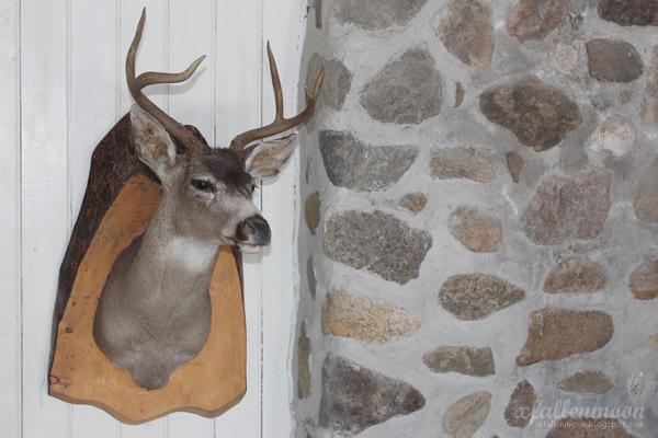 deer head and chimney