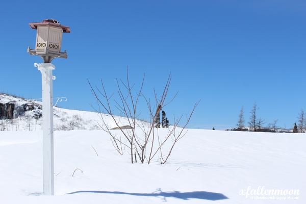 forgotten lamp in snow