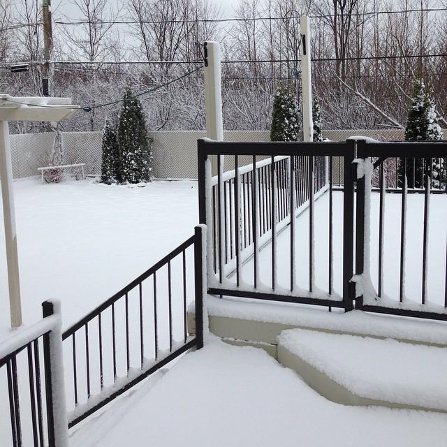 its snowing.jpg