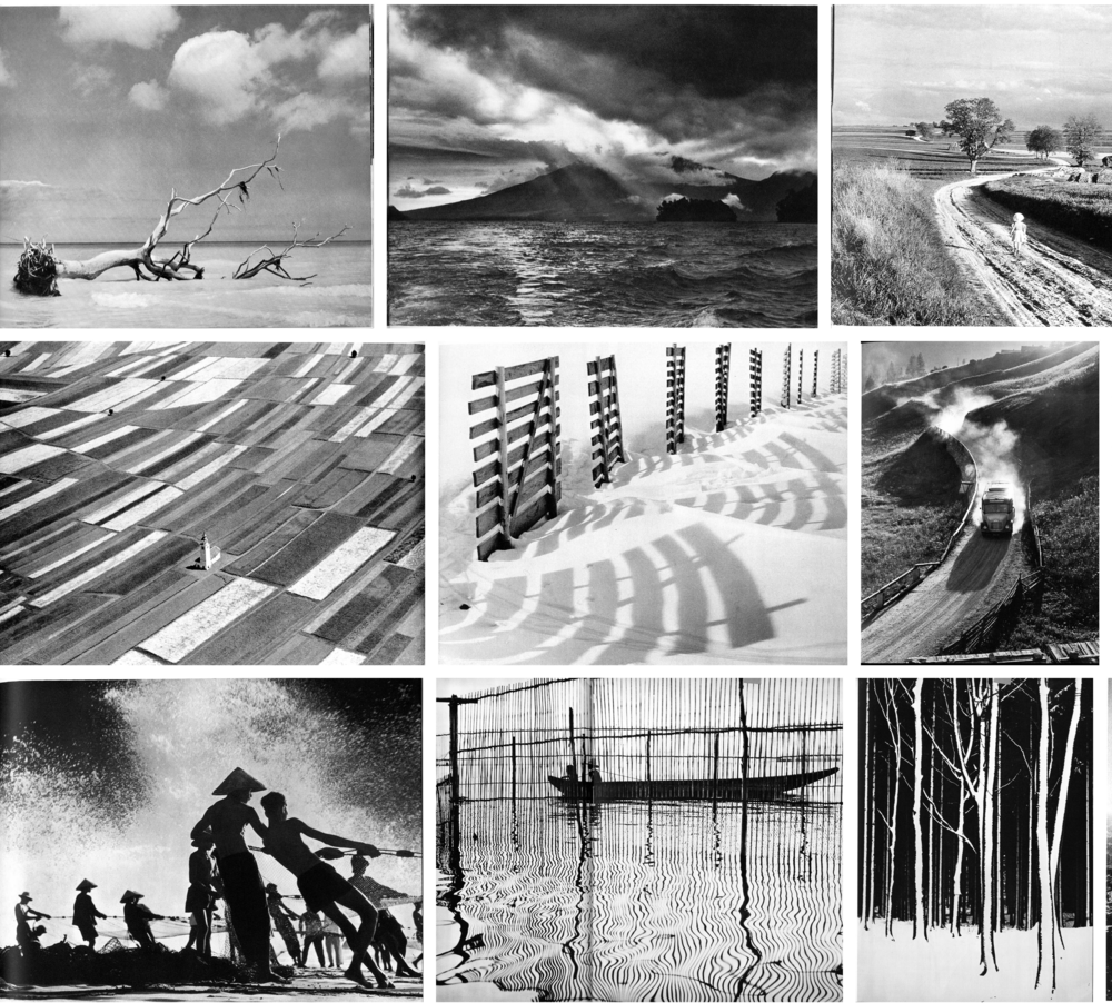 Example of competitive photography.  Montage of landscape and nature-related photographs from the FIAP Yearbooks of photographic art, published between 1954 and 1965. Detail. Thumbnails are organized in chronological order starting from top left.