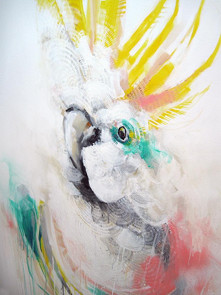Cockatoo Screech – Detail