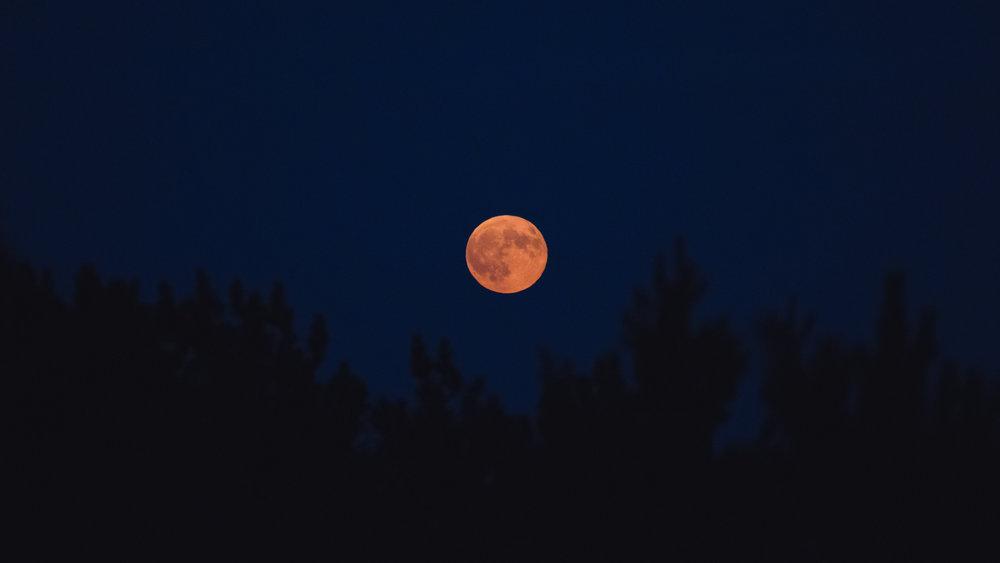 www.sarakrebsbach.com_full moon-1-2.jpg