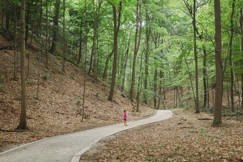 www.sarakrebsbach.com_rosy mound-5.jpg
