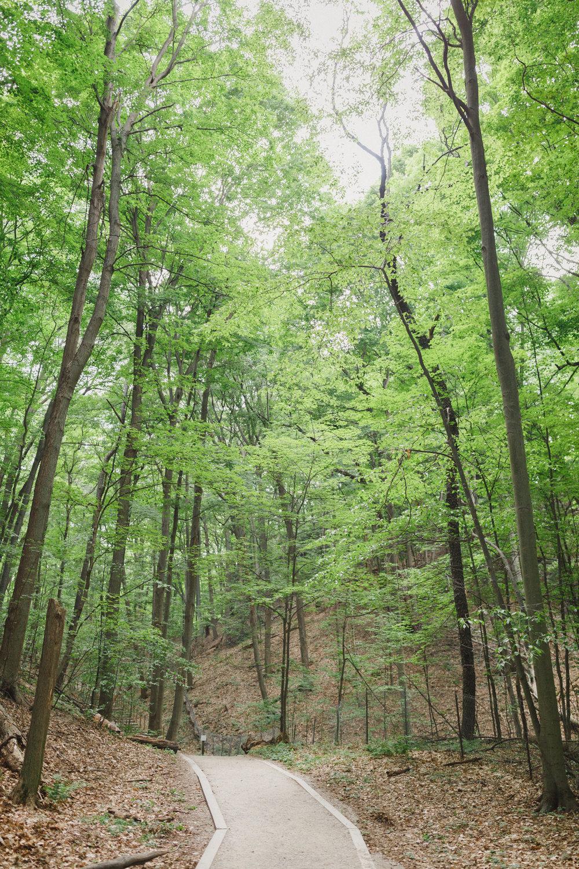 www.sarakrebsbach.com_rosy mound-7.jpg
