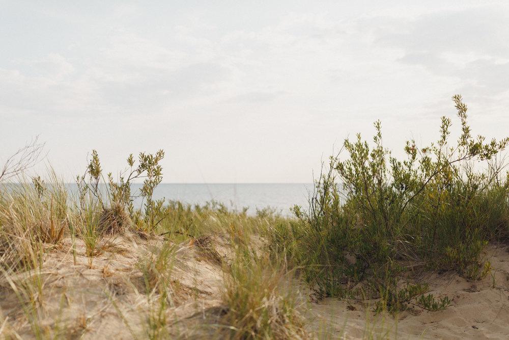 www.sarakrebsbach.com_rosy mound-25.jpg