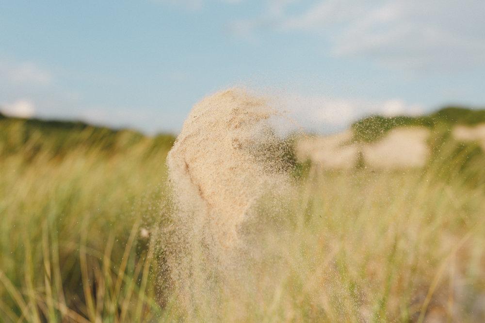 www.sarakrebsbach.com_rosy mound-41.jpg