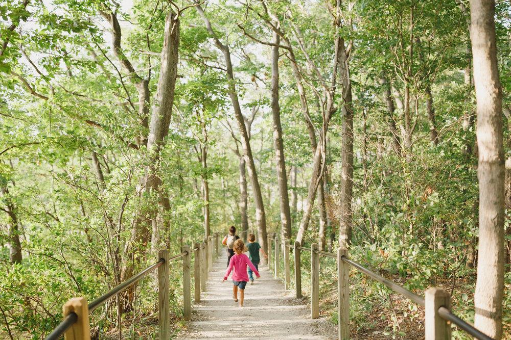www.sarakrebsbach.com_rosy mound-53.jpg