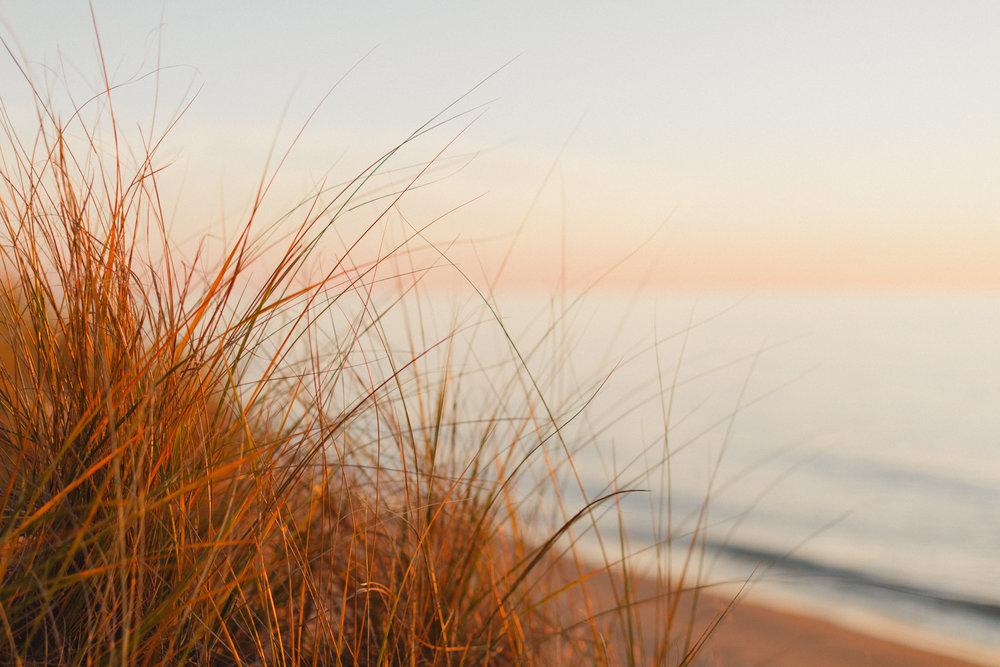 www.sarakrebsbach.com_kirk park beach-15.jpg