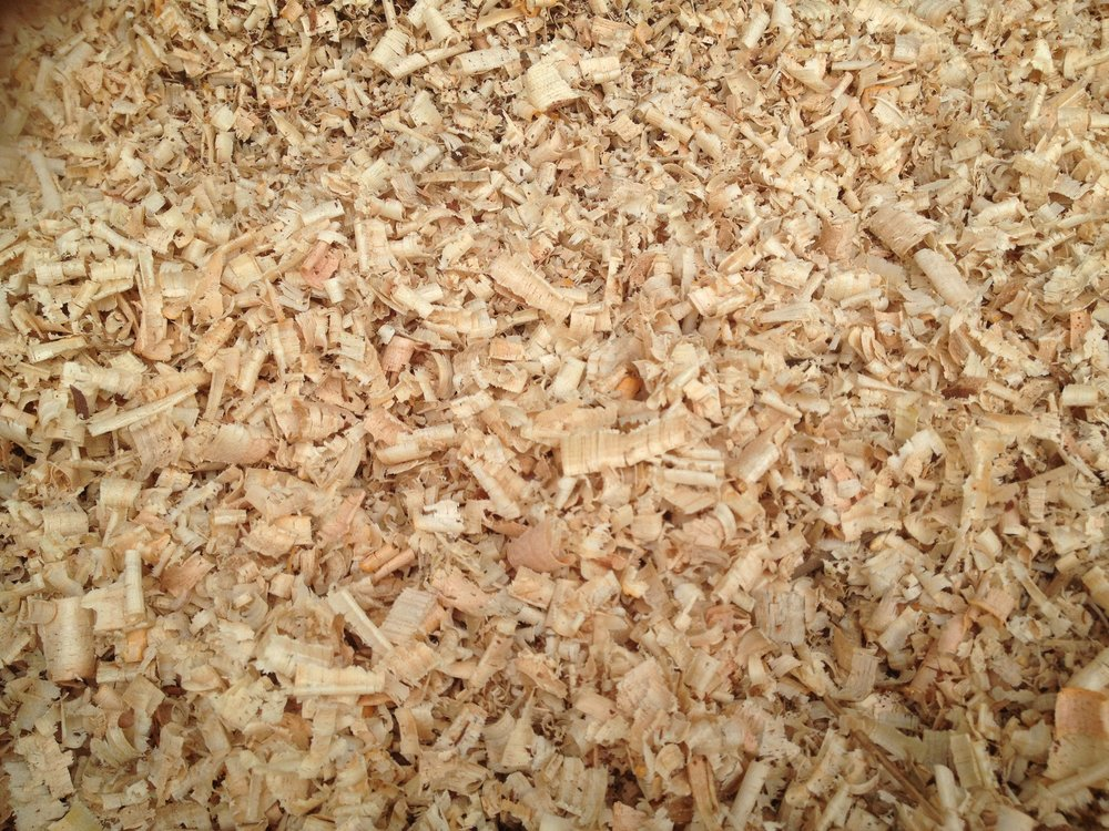6. Young Wood Chips <3yr Old Branches