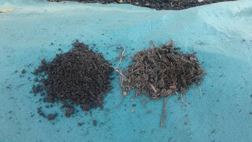 Compost - Turned and Static