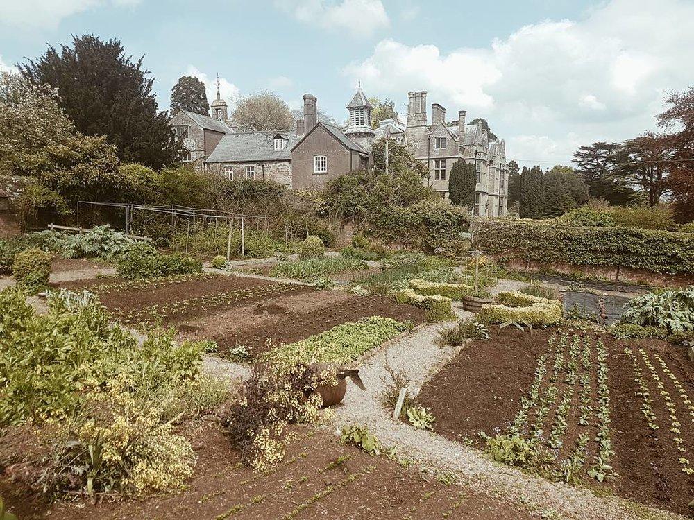 Old Lands - Wales, UK
