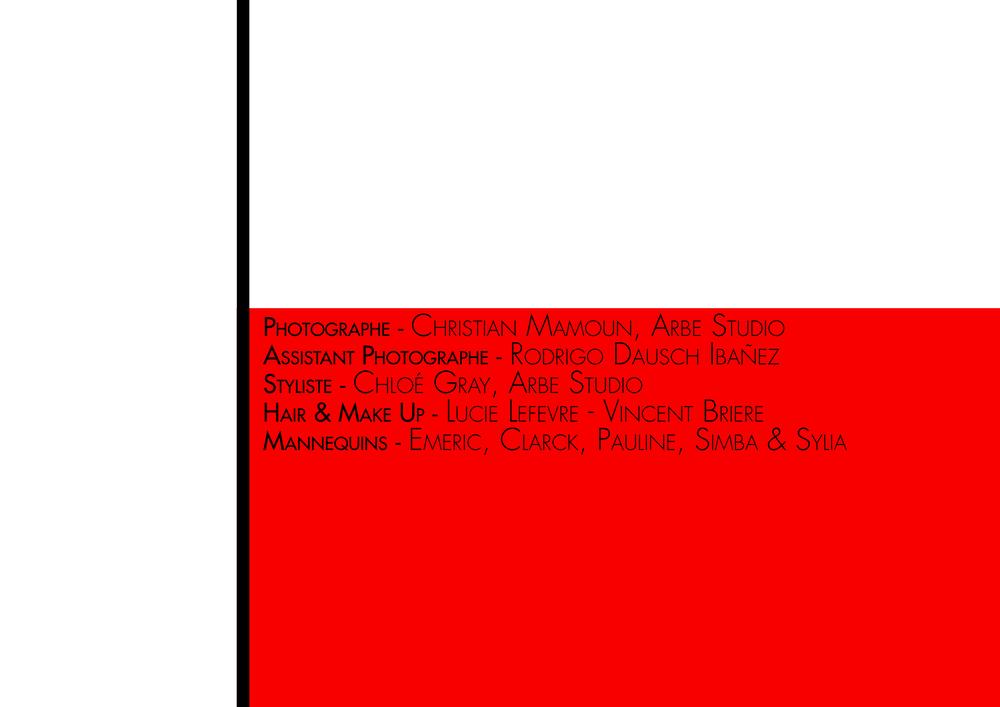 Cerbere mise en page def2.jpg