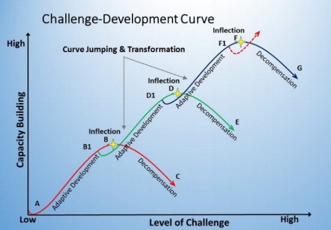 Figure 2. A Multi-Curve Model of Adaptive Growth
