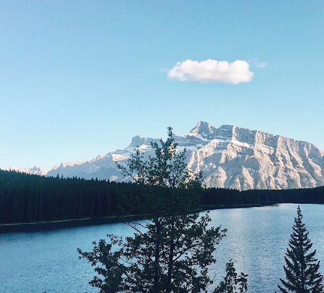 Scenic sunset cruise ft. all the golden mountains and turquoise lakes, as well as some grizzly and ram spotting. 🐻🐏💫
