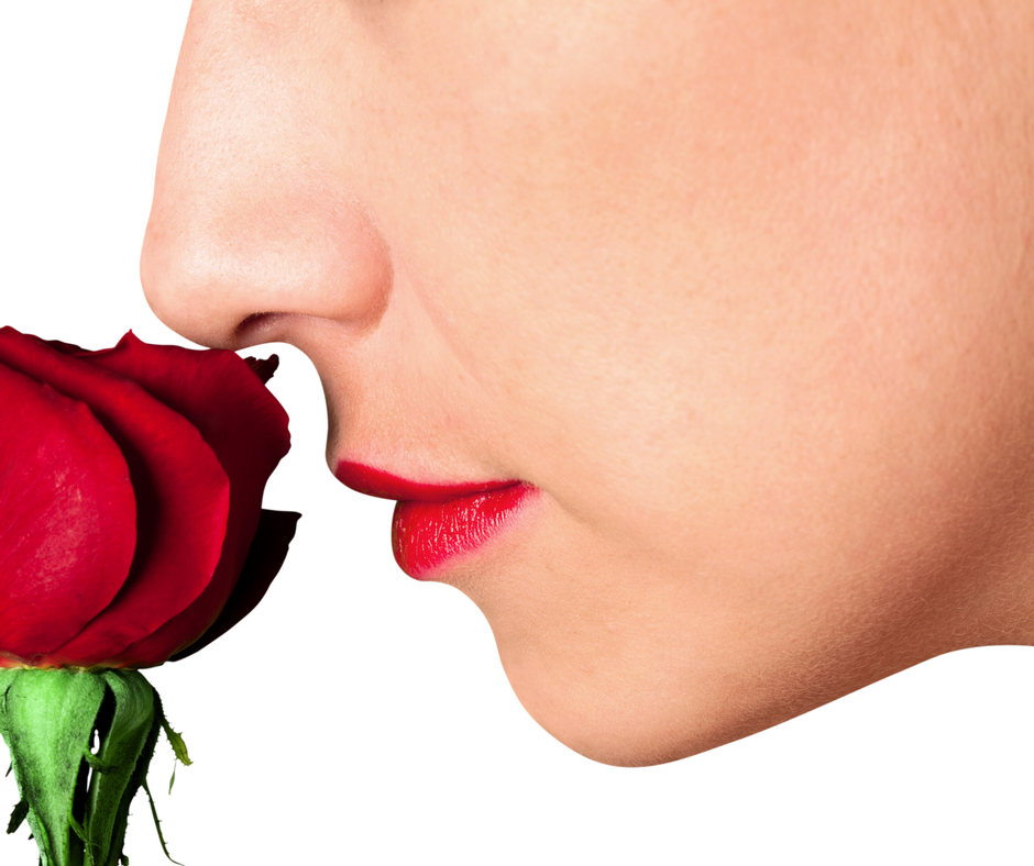 Stop and Smell the Roses.png