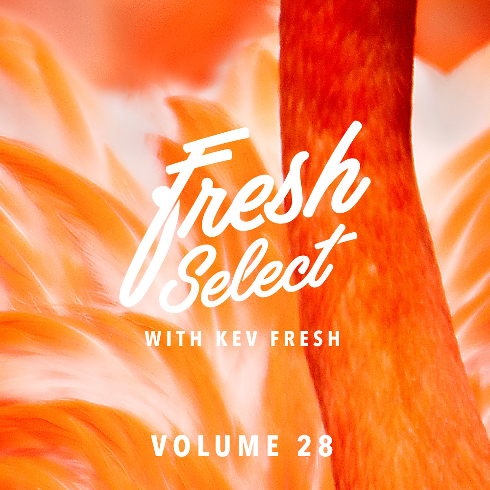 fresh-select-cover-art-vol-28.jpg