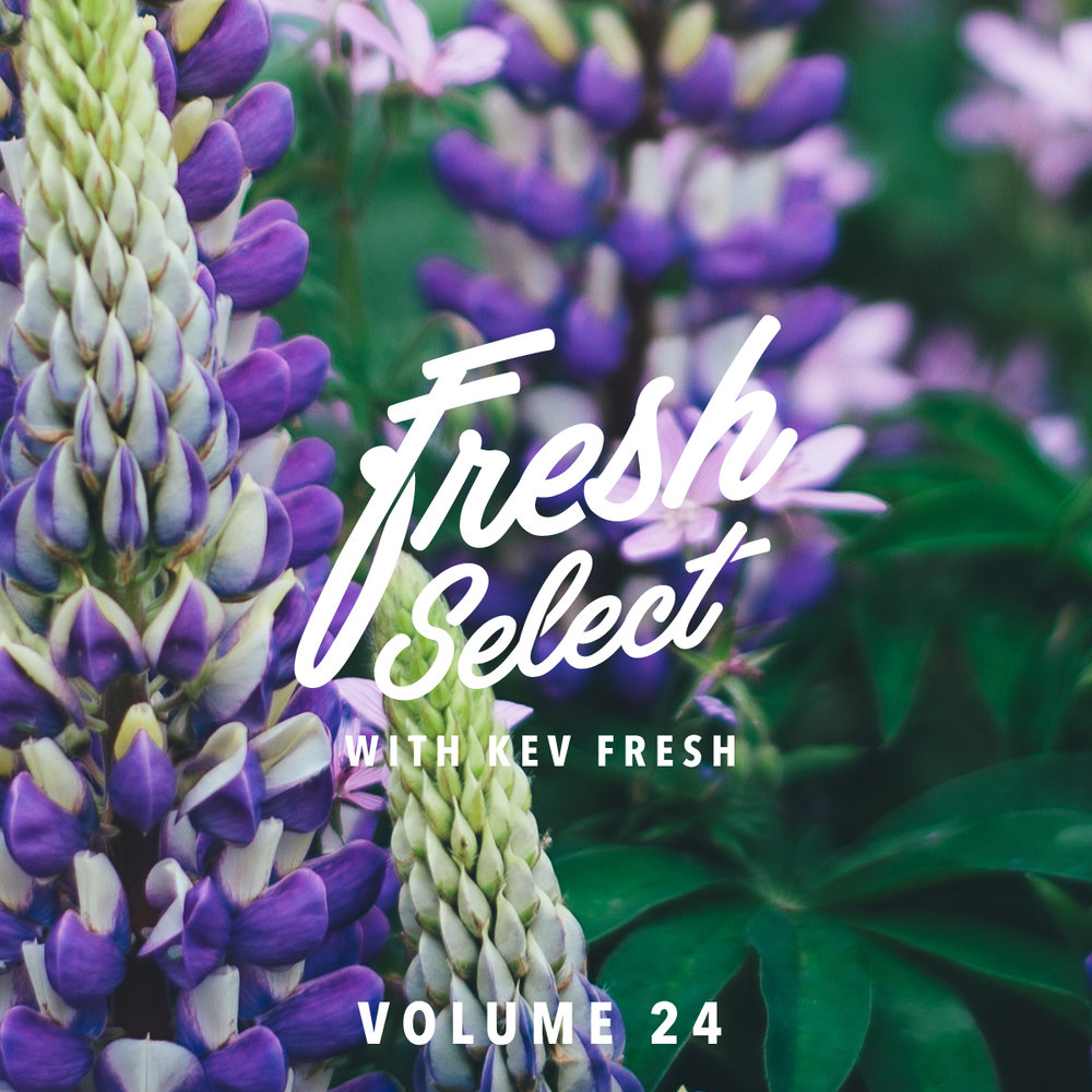fresh-select-cover-art-vol-24.jpg