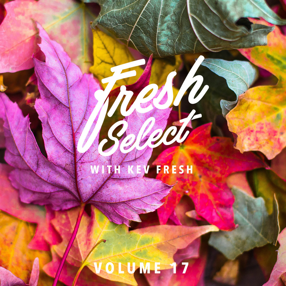 fresh-select-cover-art-vol-18.jpg