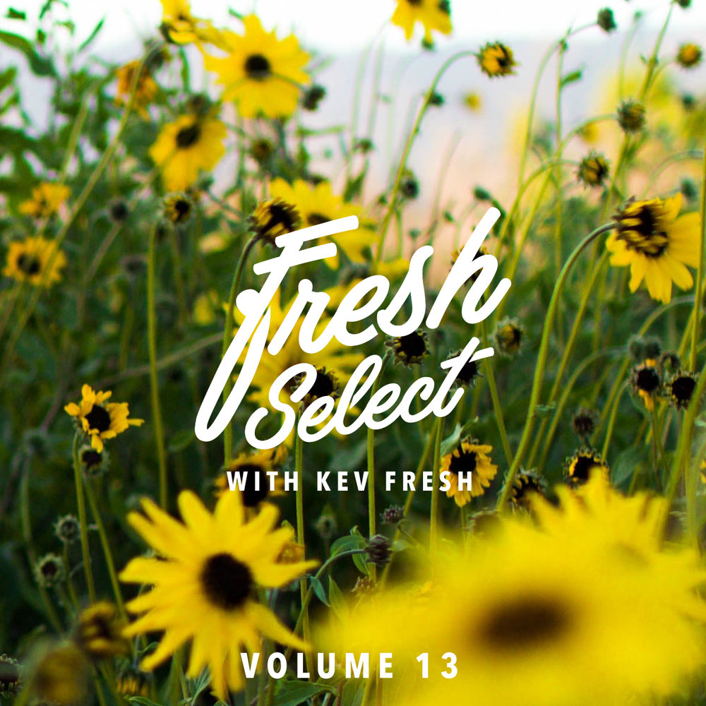 fresh-select-cover-art-vol-13.jpg