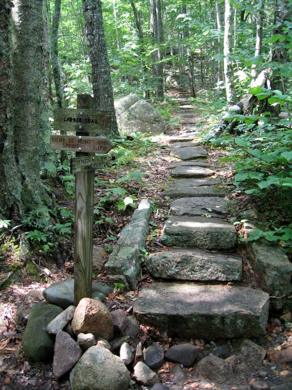 Ladder Trail on Dorr Mountain