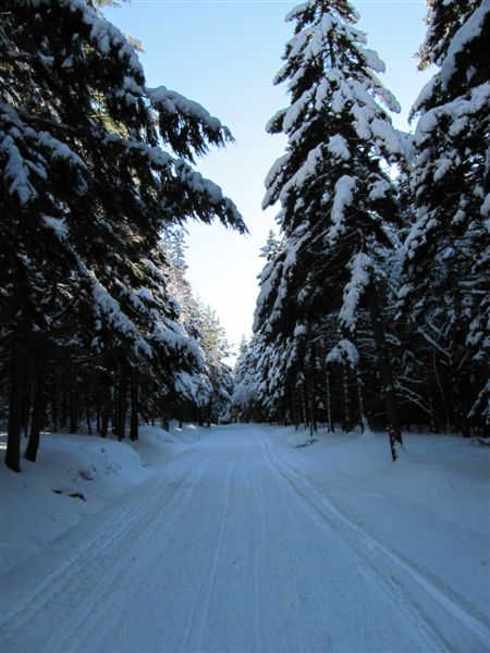Eagle Lake Carriage Road in Winter