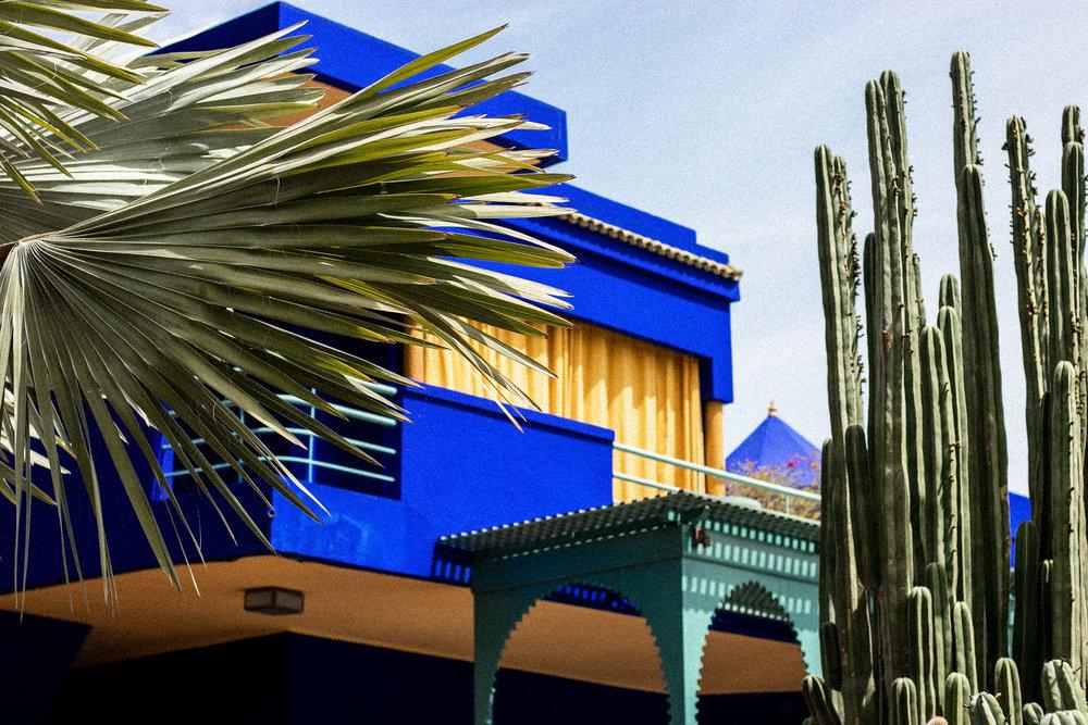 Photography by Jack Fox  www.jackfoxcooks.com