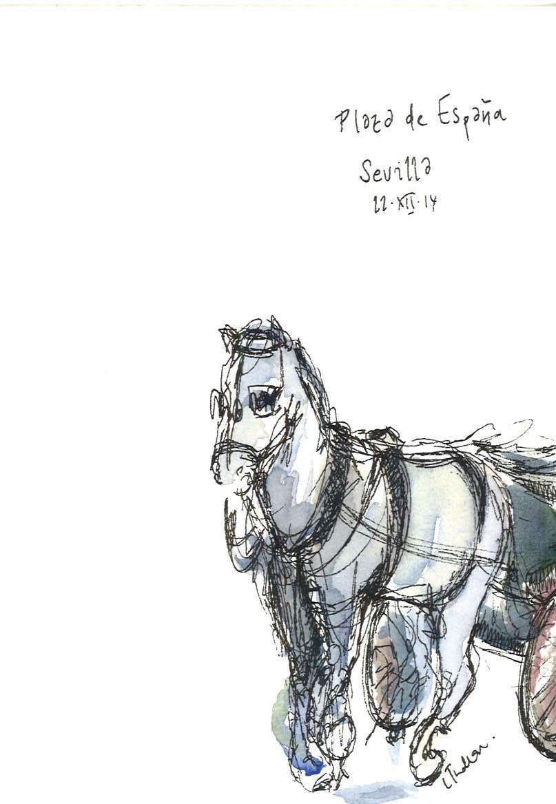sevilla horse.jpg